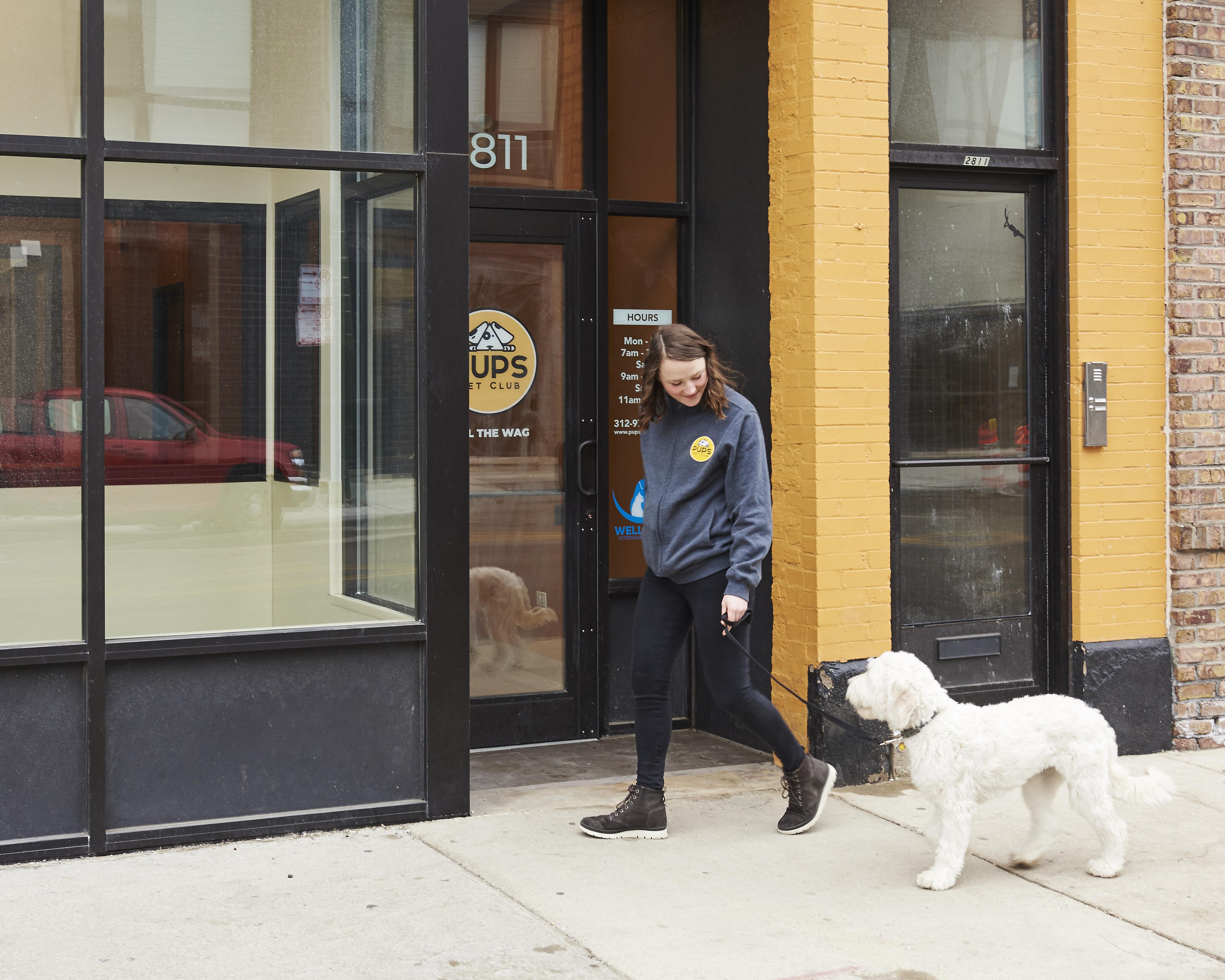 Introducing Dog Walking at PUPS