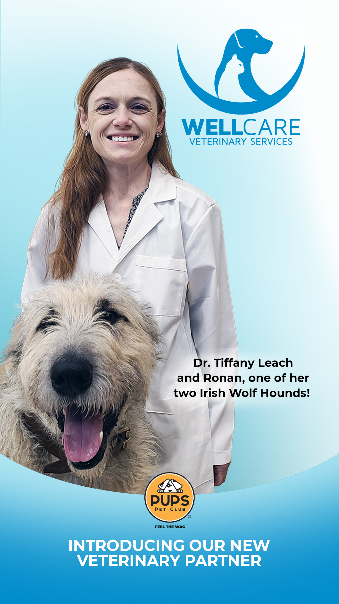 Comprehensive veterinary services, under one roof – that's something to woof about!