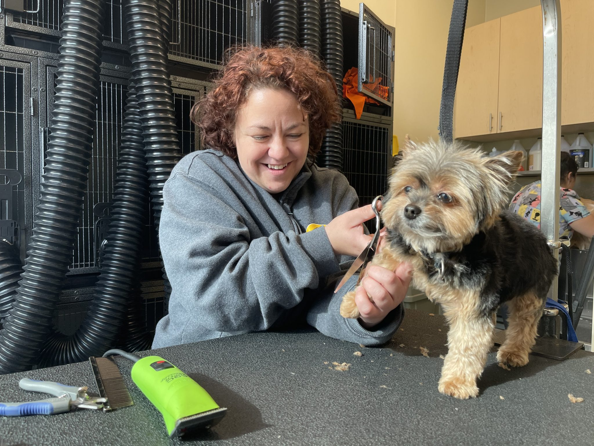 Bark and Beauty go Hand in Tail! Meet Heather, one of our Expert Groomers